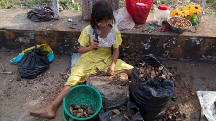 Nearly half a billion people in Asia-Pacific region go hungry: UN report