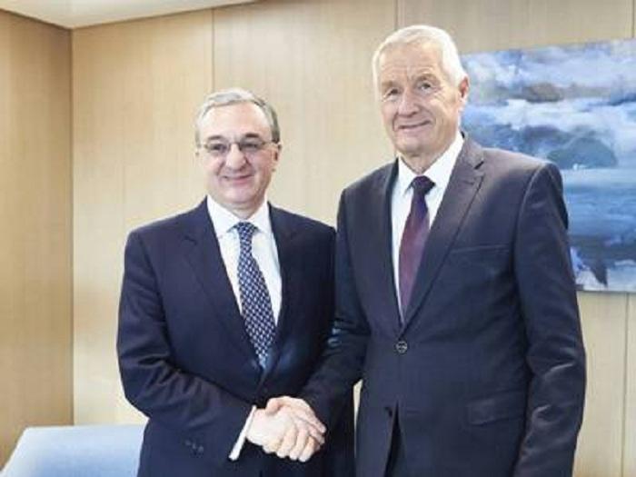 Ministro armenio aborda el conflicto de Karabaj con elsecretario general del Consejo de Europa
