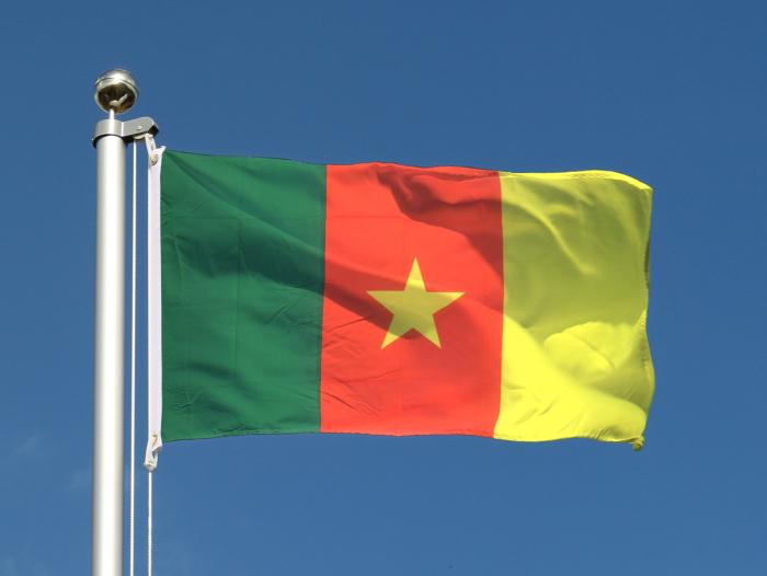 Cameroun: un journaliste accusé d