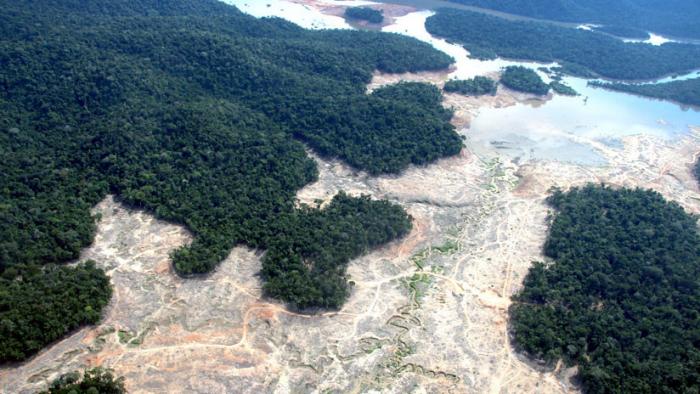 Bolsonaro, ¿un peligro para la Amazonia?