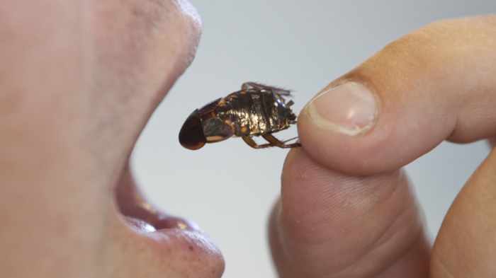 Drink urine, eat cockroaches: Chinese company