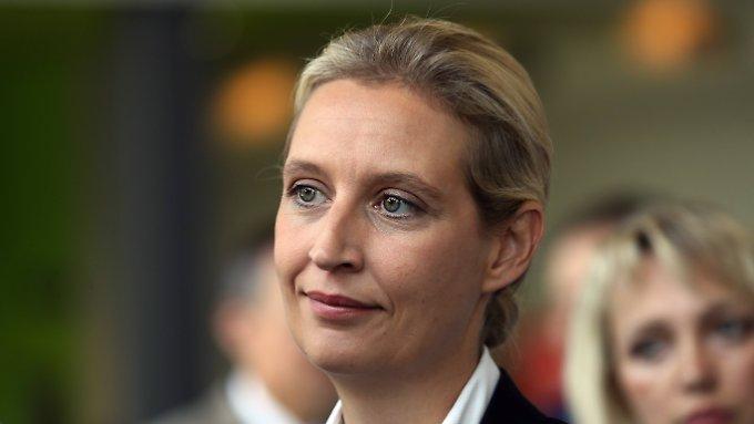 Weidels AfD-Kreis erhielt Geld aus Belgien
