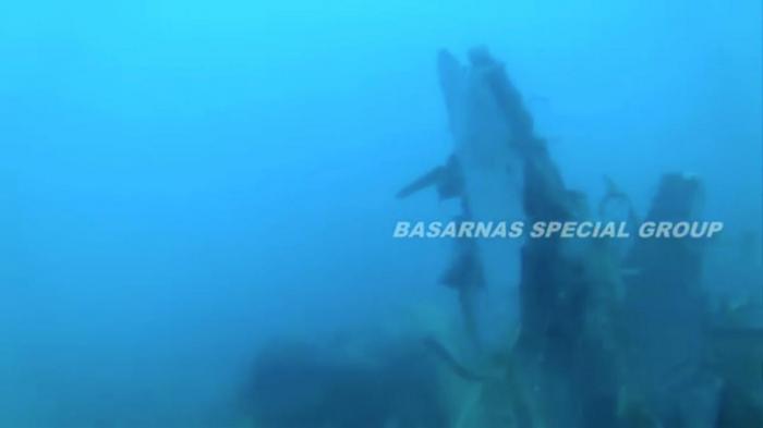 Senior Indonesian rescue diver dies in jet crash search