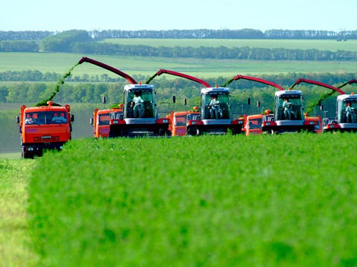 Tajikistan, Azerbaijan ready to cooperate in agro-industrial complex