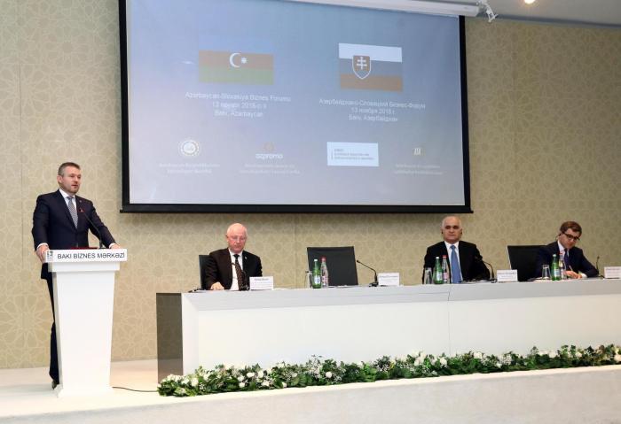 Azərbaycan-Slovakiya biznes forumu keçirilib