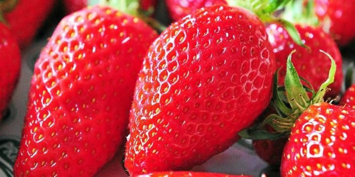Fraises piégées: une aiguille découverte dans un fruit en Nouvelle-Zélande