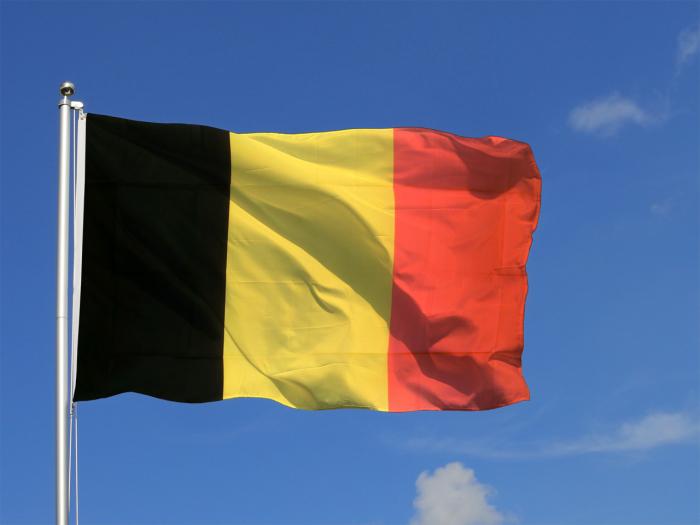 La Belgique pourrait se doter d'une unité de forces spéciales féminine
