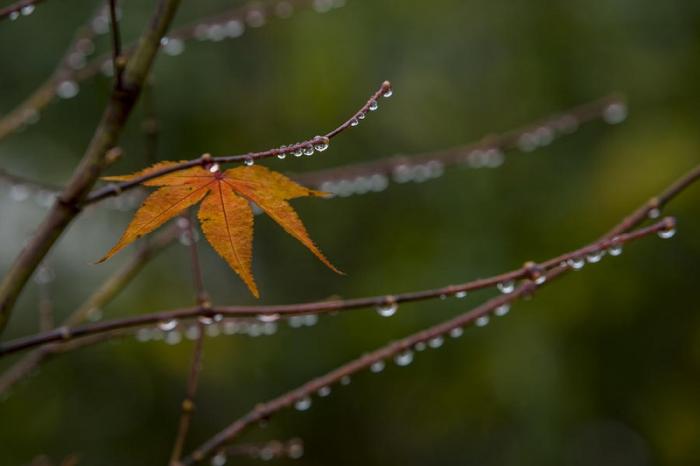 Unbeständiges Wetter in Aserbaidschan: Synoptiker warnen vor heftigem Regen und Schnee
