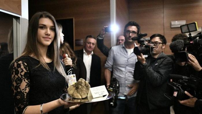 Une truffe blanche vendue à 85.000 euros