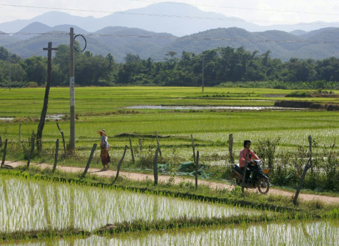 Thousands of Myanmar women forced into marriage in China: study