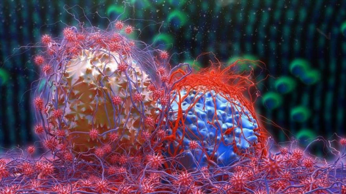 Desarrollan medicamento 2200 veces más potente en curar el cáncer