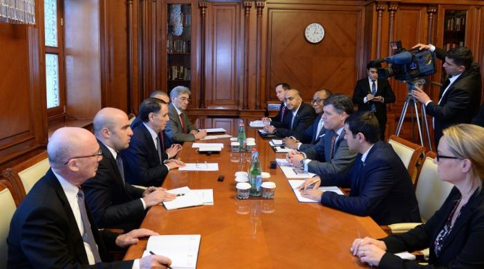 Novrouz Mammadov a reçu une délégation de l