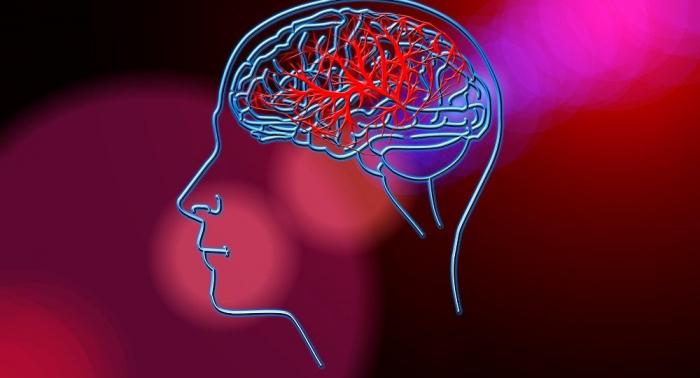 Forscher beweisen: Alzheimer ist ansteckend