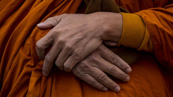 Un leopardo mata a un monje budista en pleno acto de meditación