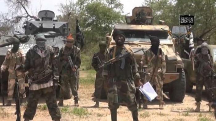 """""""Boko Haram""""ın lideri tutuldu"""
