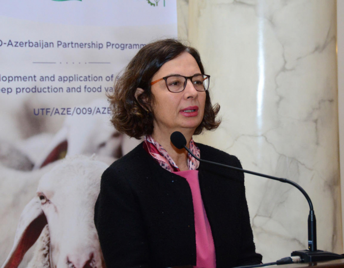 FAO interested in doing joint projects with Azerbaijan in third countries