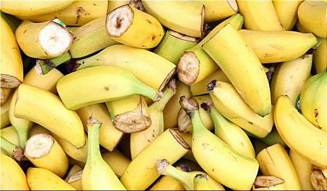 Plaga amenaza las bananas del todo el mundo- Inventan método para frenarlo