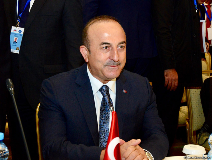 Some problems solved thanks to Azerbaijan's efforts during BSEC chairmanship -Turkish FM