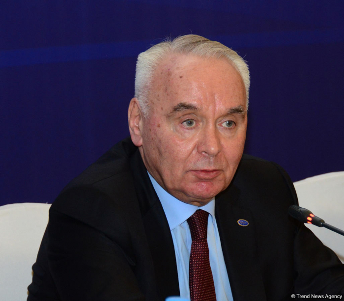 Cohesion within BSEC strengthened during Azerbaijan's chairmanship - deputy FM