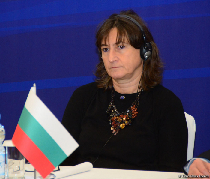 Bulgaria to continue Azerbaijan's work in BSEC - deputy FM