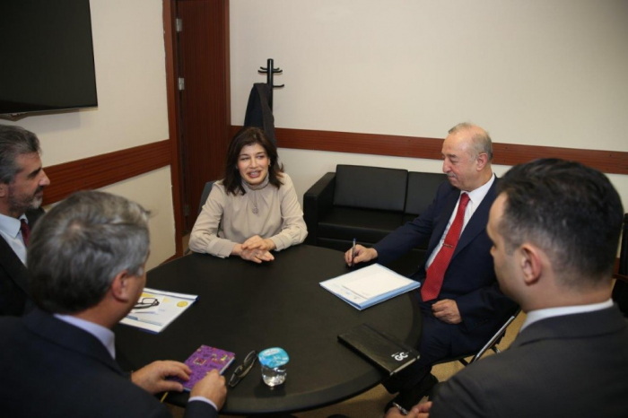 Turkic Culture and Heritage Foundation, IMM discuss future cooperation