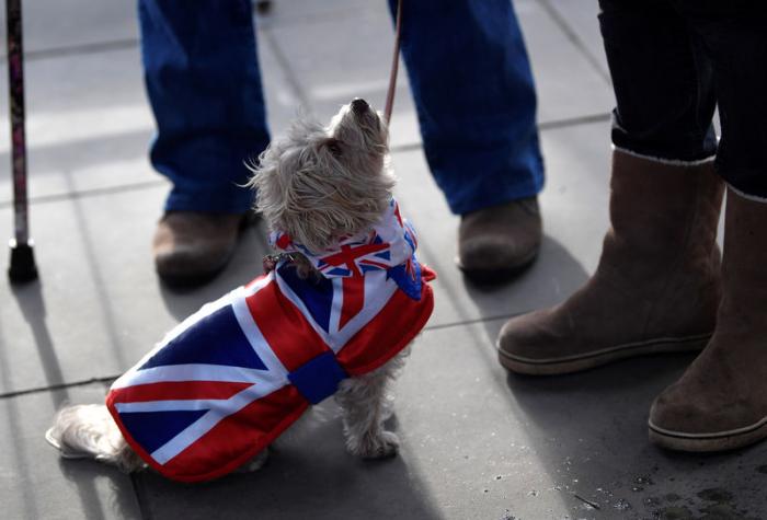 Privatbanken blicken vorsichtig nach vorn - Sorge vor hartem Brexit