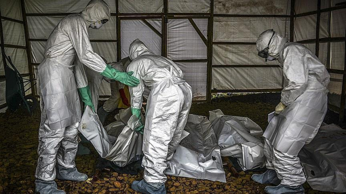 Death toll from Ebola in DR Congo climbs to 370
