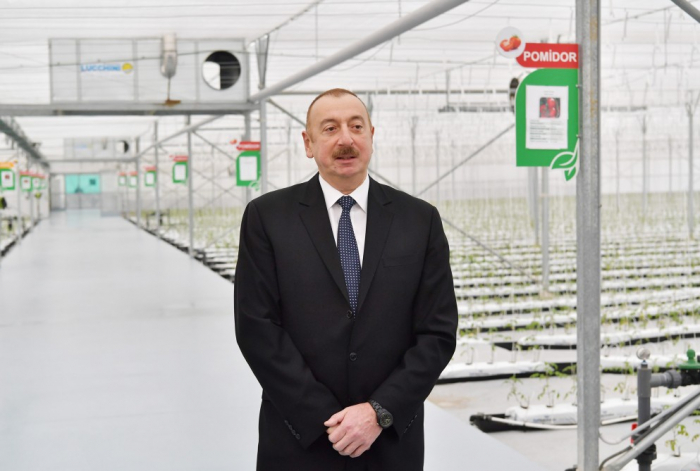 """""""İxtisar olunan strukturlarda çalışanlar işlə təmin olunacaq"""" - İlham Əliyev"""