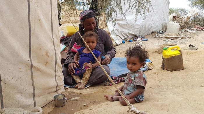 About 56 mln in urgent need of food in 8 conflict zones