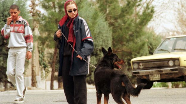 Tehran bans dog walking in public spaces