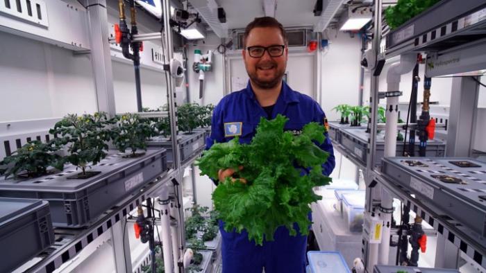 270 Kilo Gemüse in der Antarktis geerntet