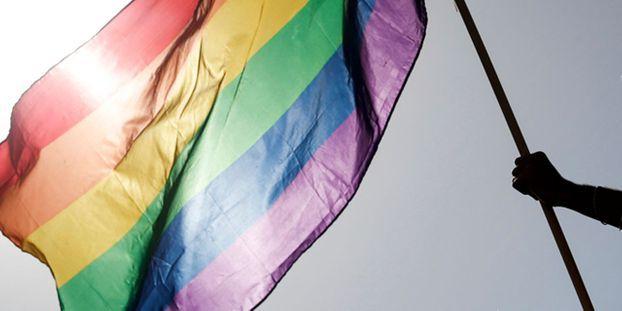 Égypte : un présentateur télé condamné à un an de prison pour avoir interviewé un gay