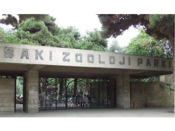 Bakı Zooparkı bağlanır - Heyvanlar Qaradağa köçürülür