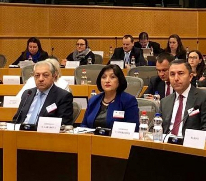 Azerbaijani MPs attend Euronest PA Committee meetings