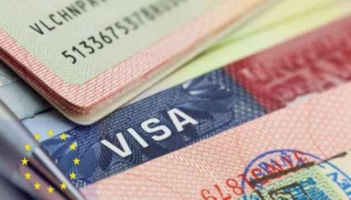 Əsədin və suriyalı diplomatların vizası ləğv edildi