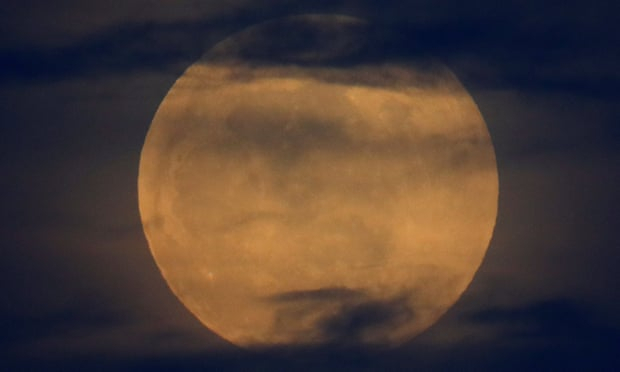 Super blood wolf moon: stargazers battle cold and clouds to see lunar eclipse