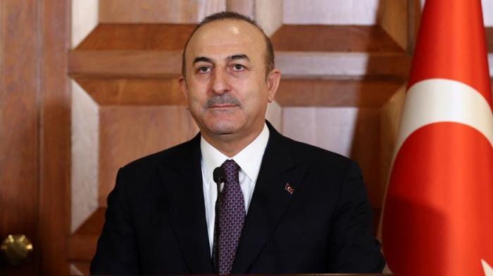 """Cavusoglu: """"Une zone sécurisée en Syrie profitera à la stabilité"""""""