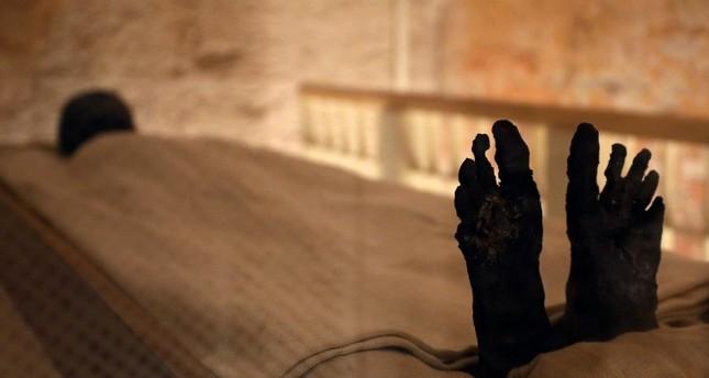Experts unveil results of work on Pharaoh Tutankhamun