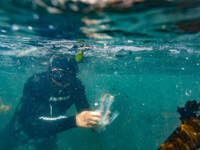 Bacteria glues plastics together in even deadlier threat to sea life