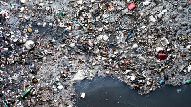 Environment in multiple crises - report