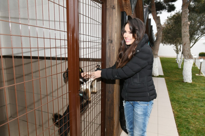Leyla Aliyeva attends opening of Toplan Homeless Dog Care Center