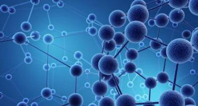Immune stimulant molecule shown to prevent cancer