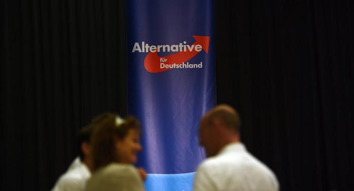 AfD legt Bundestag falsche Spenderliste vor – Medien
