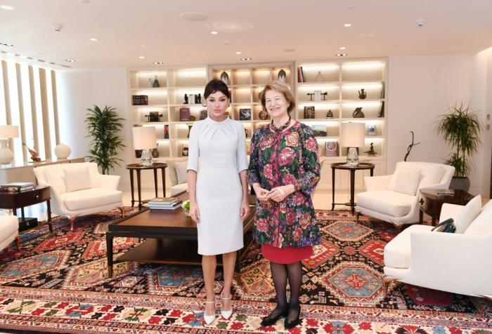 Erste Vizepräsidentin Aserbaidschans Mehriban Aliyeva trifft sich mit britischer Delegation