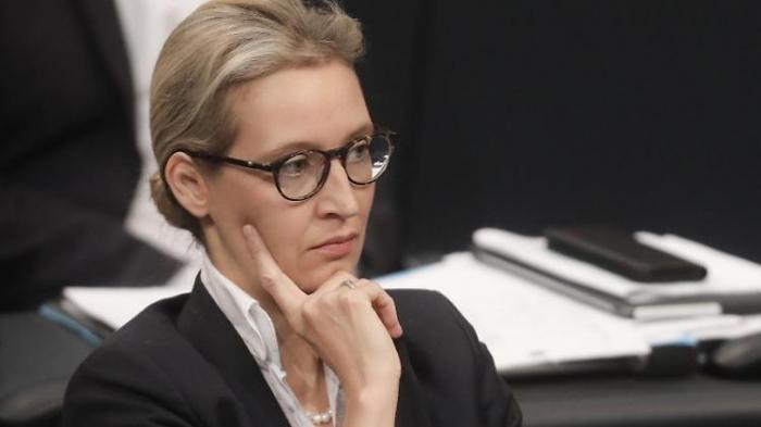 Kubicki prophezeit harte Strafen für AfD
