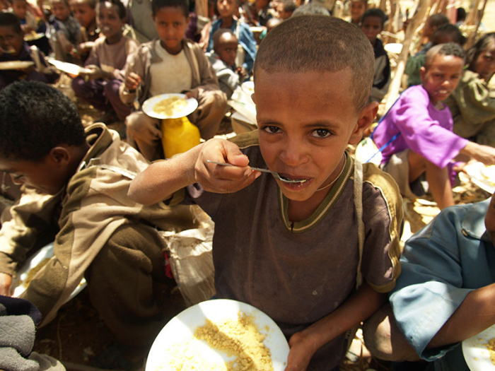 Could the whole world risk starvation?-  iWONDER