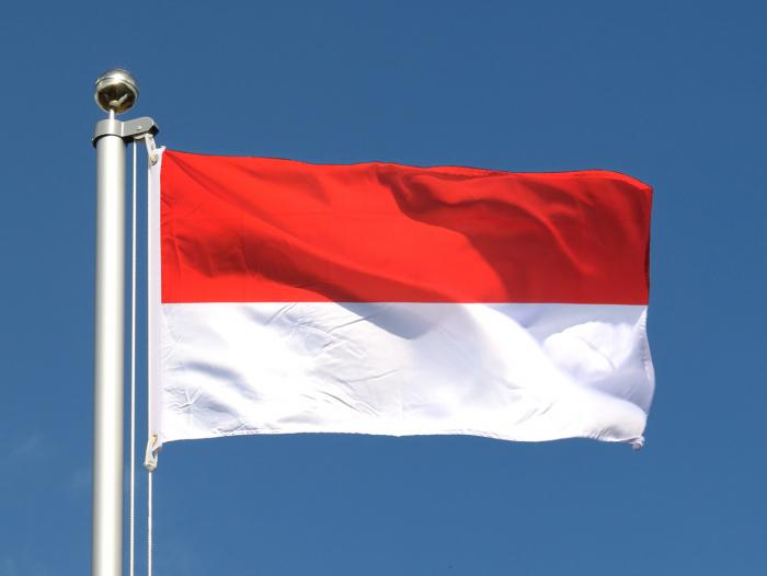 Indonésie: la police enroule un serpent autour d