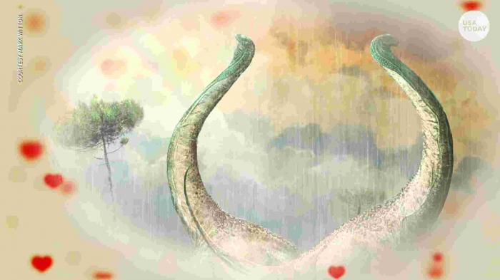 Les scientifiques découvrent un dinosaure à la queue en forme de cœur