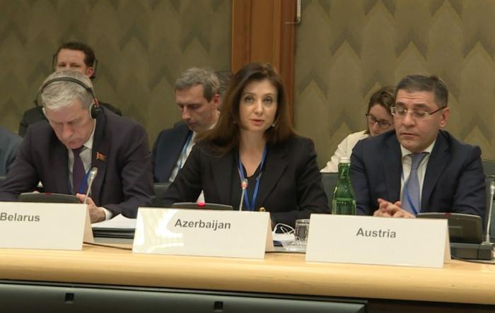 """Se habló sobre el servicio """"ASAN"""" en la Asamblea Parlamentaria de la OSCE"""