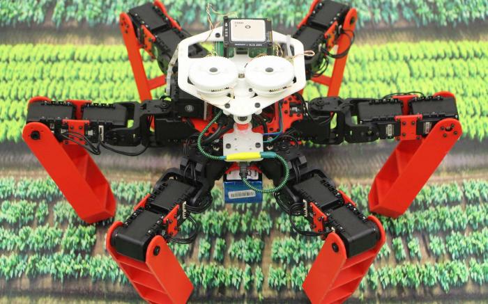 Un robot à pattes qui a le sens de l